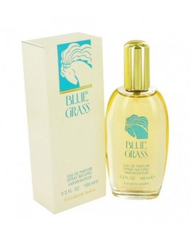 Blue Grass Perfume By Elizabeth Arden